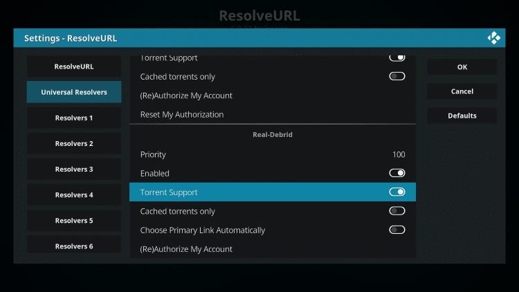 torrent support