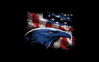 freedom kodi add-on