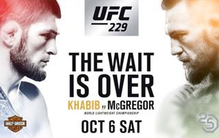 UFC 229 Contest