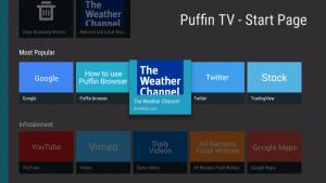 puffin tv ui