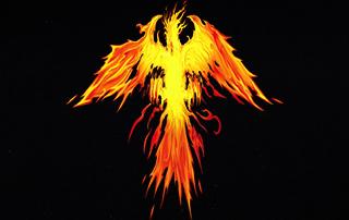 phoenix rises kodi