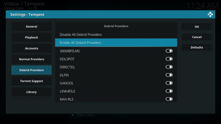Within the Debrid Providers menu on the left, choose Enable All Debrid Providers under Debrid Providers.