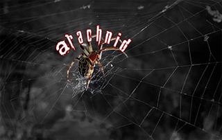 arachnid kodi