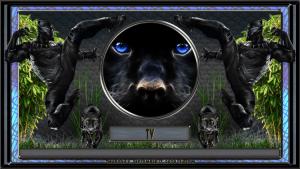 black panther kodi build tv shows