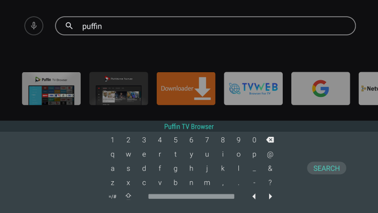 """Type in """"puffin"""" and click the search icon"""