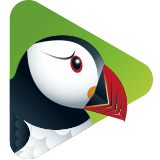 Puffin TV is a free web browser that works great on the Android TV operating system.