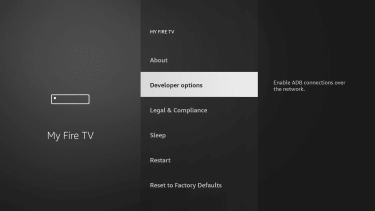 Choose Developer Options