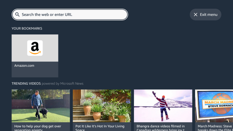 Launch the Silk Browser and click the Search icon to enter a URL.