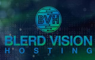 blerd vision hosting