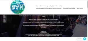 blerd vision hosting website