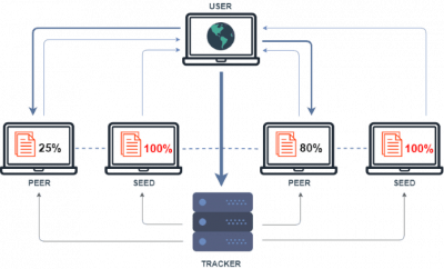 The sharing of torrent files happens on a peer-to-peer (P2P) network with computers called peers.This activity is known as seeding.