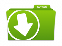 A torrent file is a file that contains metadata and is shared on peer-to-peer (P2P) networks over the Internet.